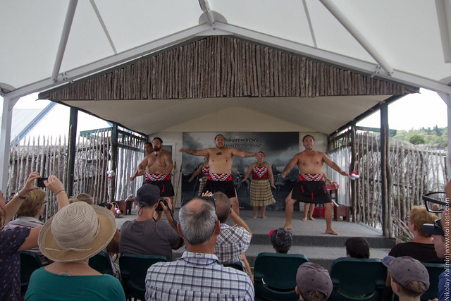 NZ_14-17
