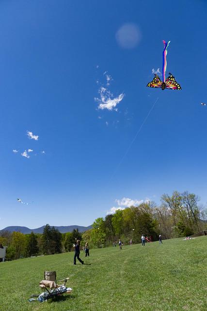 FENCE Kite Festival-009