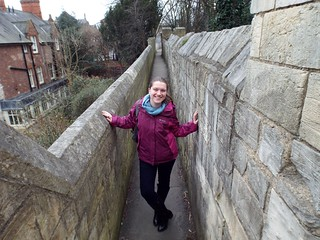 York City Walls - the tea break project solo female travel blog