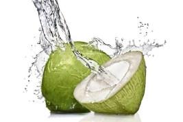 Hasil gambar untuk air kelapa muda