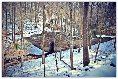 Poinsett Bridge Heritage Preserve