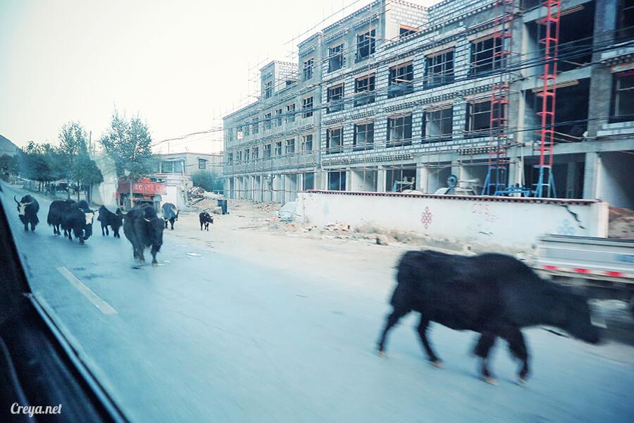 2015.12.29 | Tibet 西藏踢北去 | 身心大突破的公路之旅,從拉薩一路向東到林芝(上集 - 米拉山口與如廁記) 08.jpg