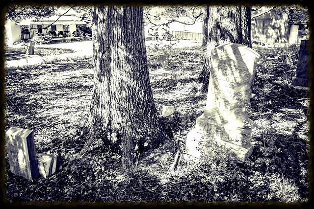 Woodside Mill Cemetery Lomo