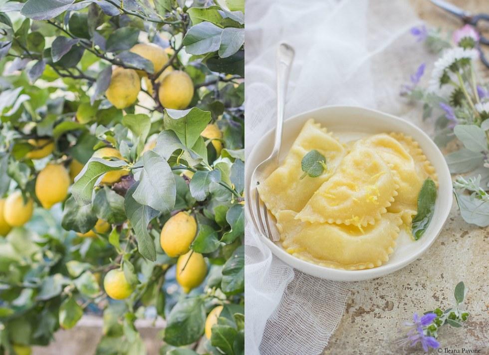 Ravioli al limone_2