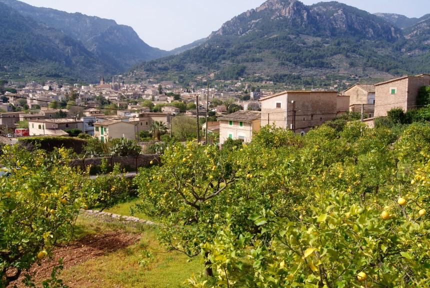Excursión: Sòller-Sa Capelleta-Binibassí-Faro de Muleta