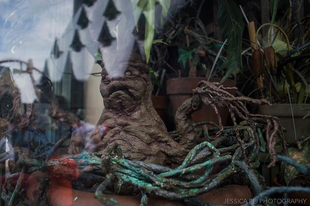 Mandrake Harry Potter World Universal Studios Florida