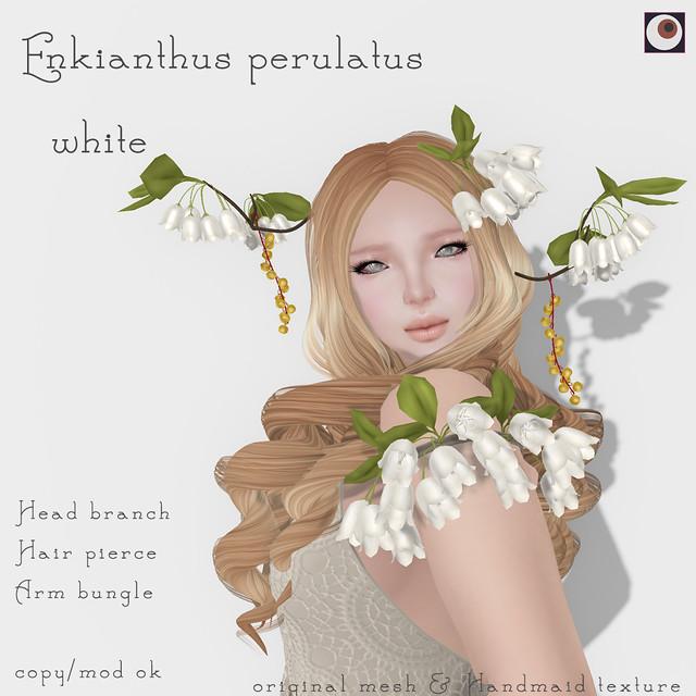 *NAMINOKE* Enkianthus white AD