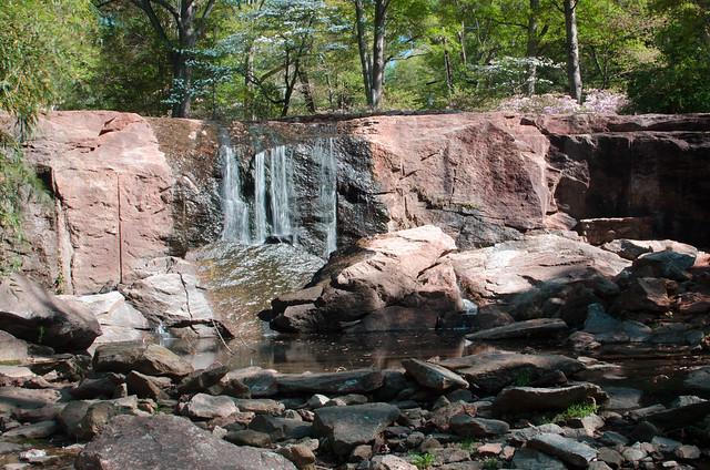 Rock Quarry Garden-010