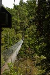 Sentiers aménagés de l'Abel Tasman