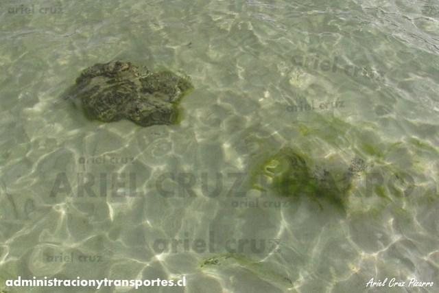 Anakena - Isla de Pascua
