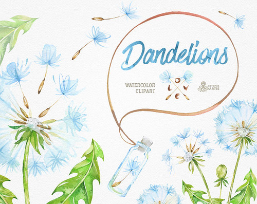 Dandelions. 14 Watercolor Clipart, blowballs, floral wedding, invitation, greeting card, diy clip art, flowers, quote, love, jars, template
