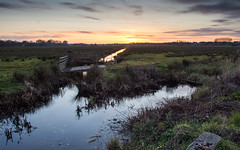 Wetlands at Wareham