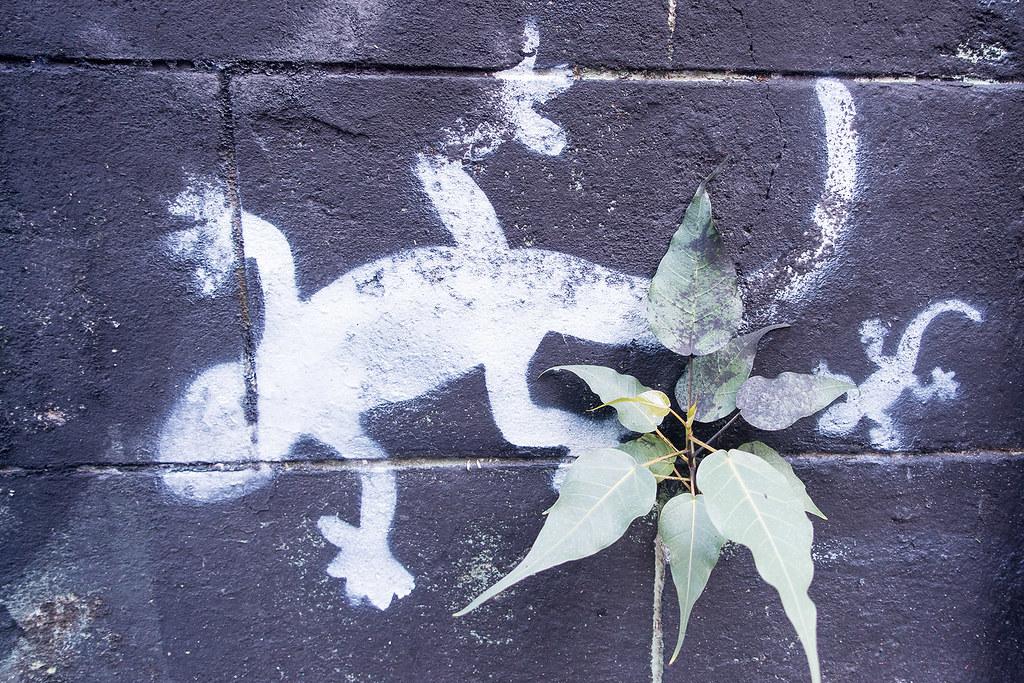Chiang Mai Street Art 19