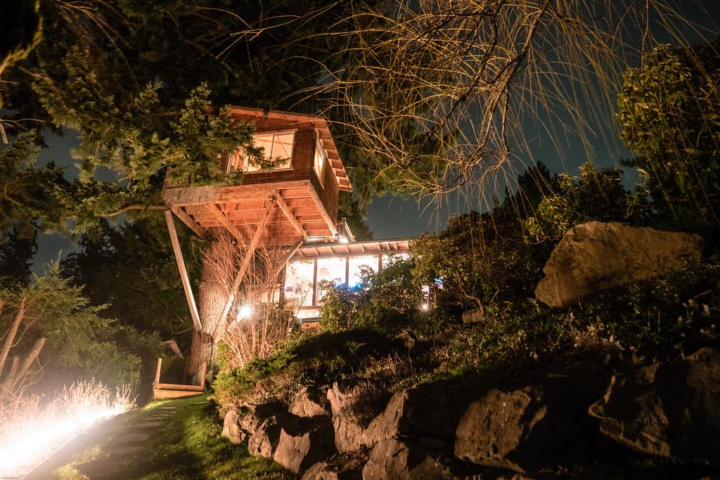 Cottage Lake Treehouse