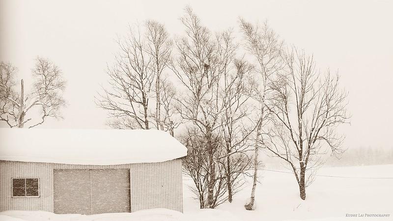 北國風情畫(a snow scene)