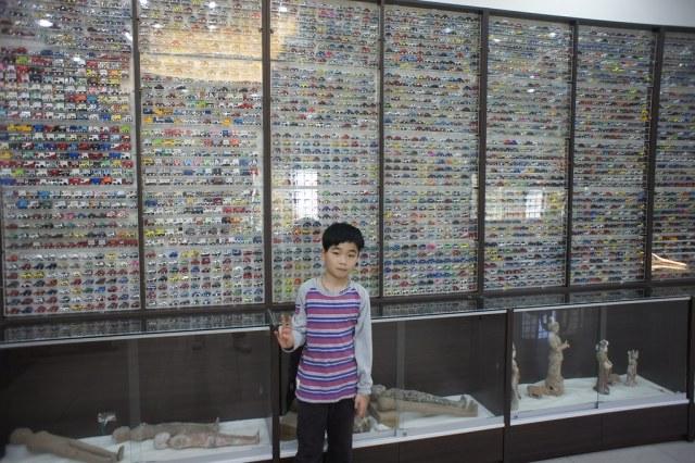 台南市安定區古寶無患子 (35)