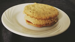Peanut butter sandwich cookie Girl Scout knockoff