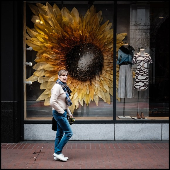 Sunflower - San Francisco - 2016