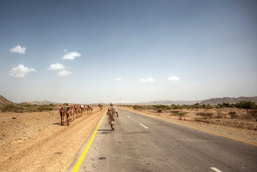 A camel caravan transporting salt from the mine.