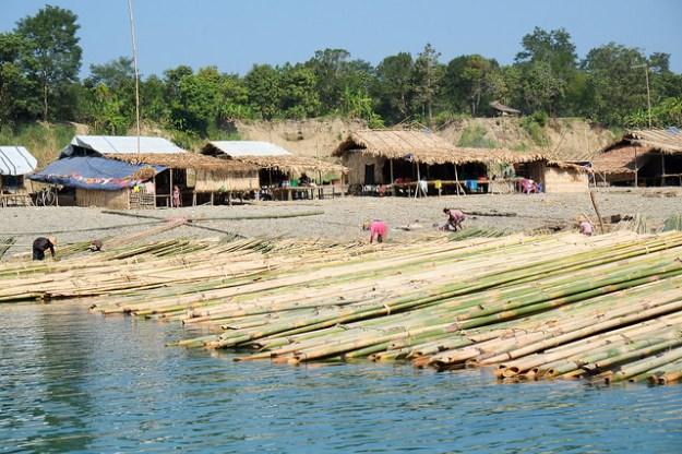 Bamboo harvest. Lemro River