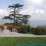 04 Viajefilos en Shimla 01