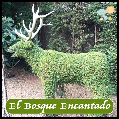Bosque Encantado Madrid