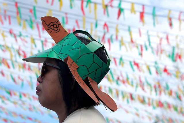 Pawikan Festival 2015