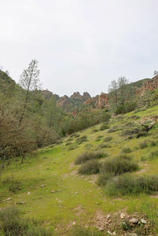 02.28. Pinnacles National Park