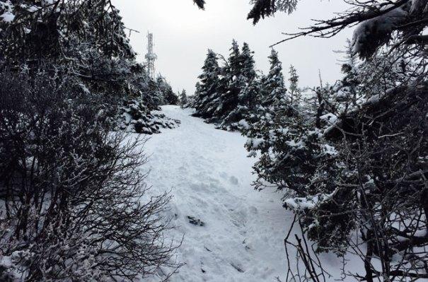 Winslow Trail Summit Approach
