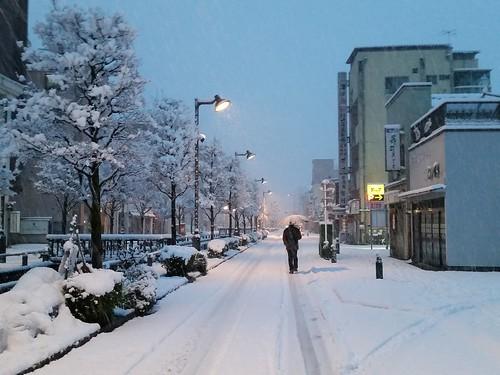 久しぶりの大雪 #熊谷 #kumagaya
