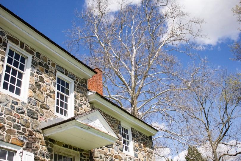 brandywine-battlefield-revolutionary-war-chadds-ford-pa-washington-headquarters-tree