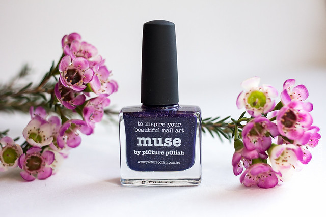 01 Picture Polish Muse Ann Sokolova swatches