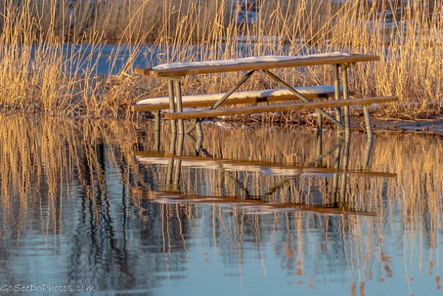 Picnic Table Reflection