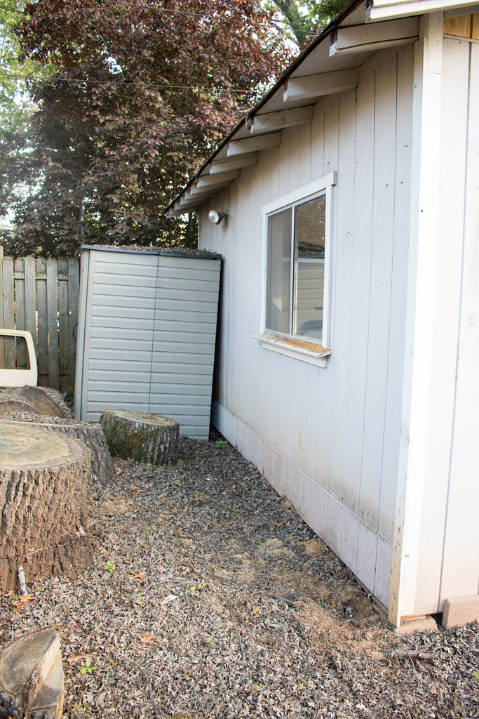 Right Side of the Shed
