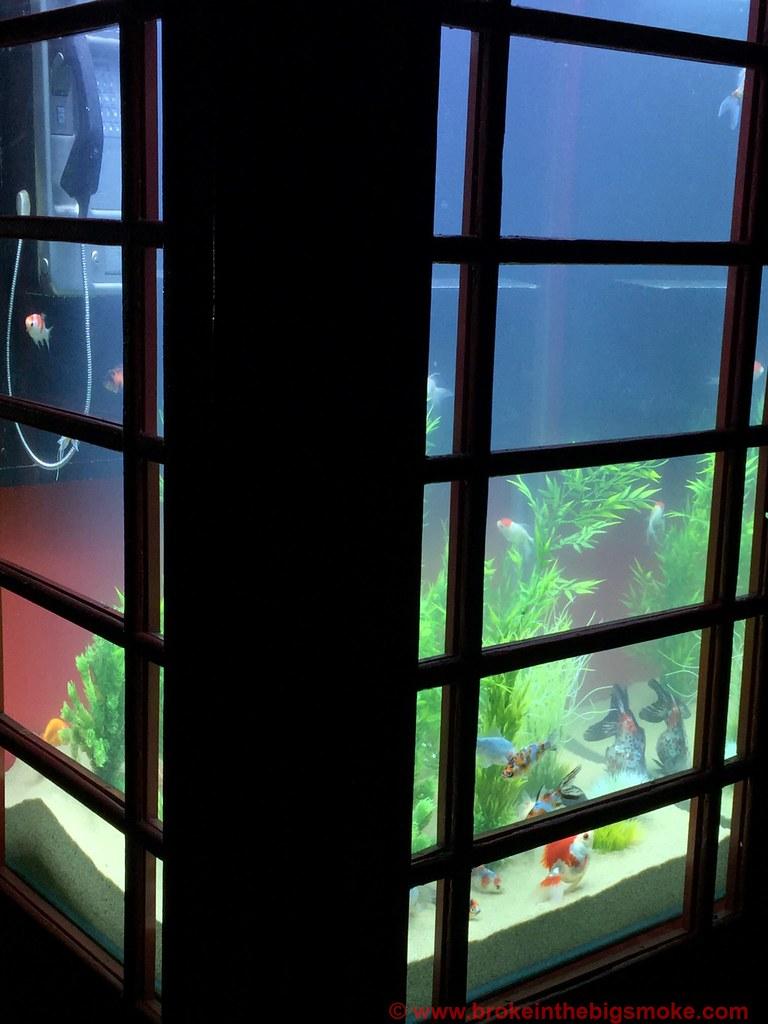 Lumiere London Aquarium
