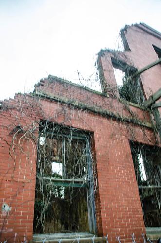 Shamrock Hotel Ruins-015