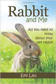 Meet Harry Hopper and Dumbledore - Tips For Getting Rabbits