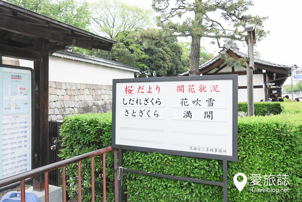 京都赏樱景点 元离宫二条城 02