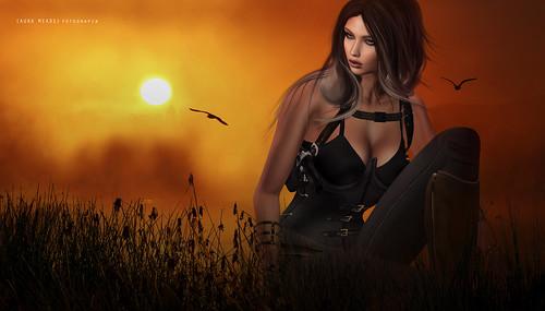 ..● Hunting ●..
