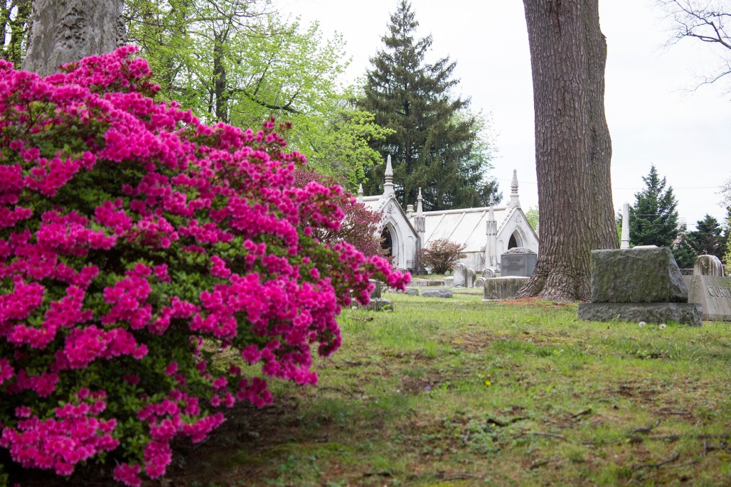 wilmington-brandywine-historical-cemetary-flowers-marble