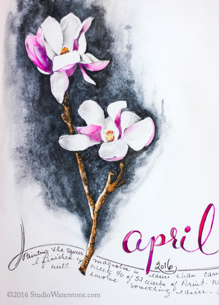 Sketchbook: Magnolia 4/18/16
