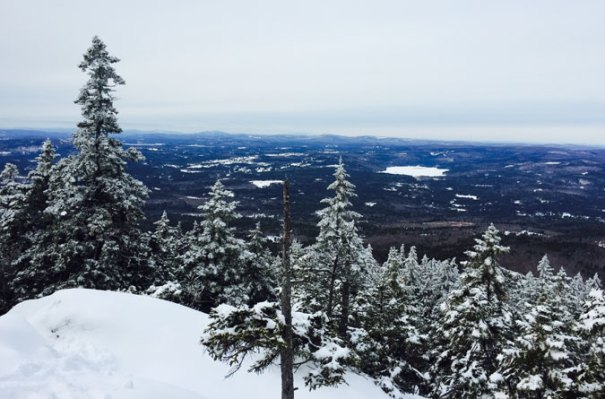 Winslow Trail Lookout