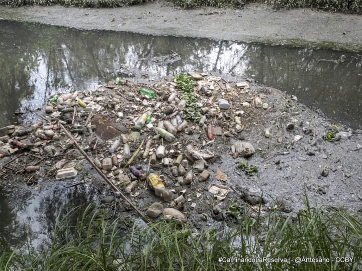 Basuras en el Río Torca