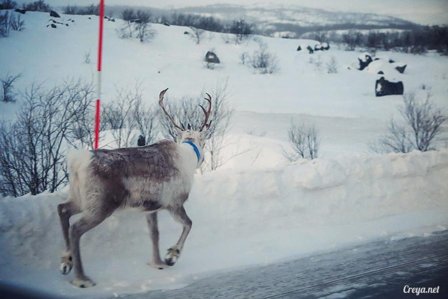 2016.02.23| 看我歐行腿 | 阿呀~一不小心就從瑞典到了挪威, Narvik 小鎮遇見地理課本中的峽灣 09.jpg