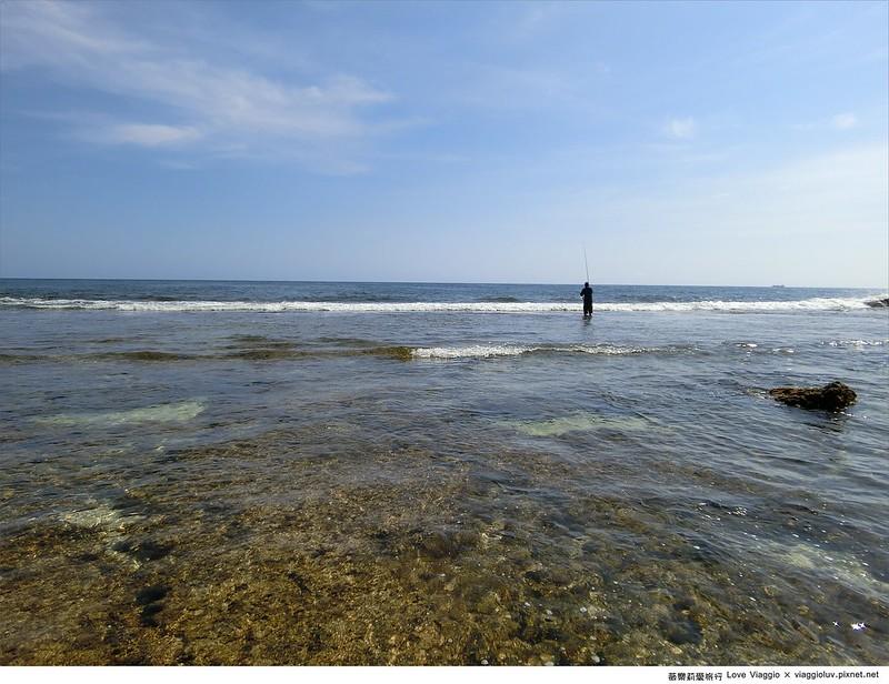 小琉球,海龜,環島 @薇樂莉 Love Viaggio | 旅行.生活.攝影