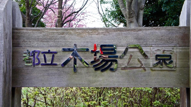 Kiba Koen Plum Blossoms