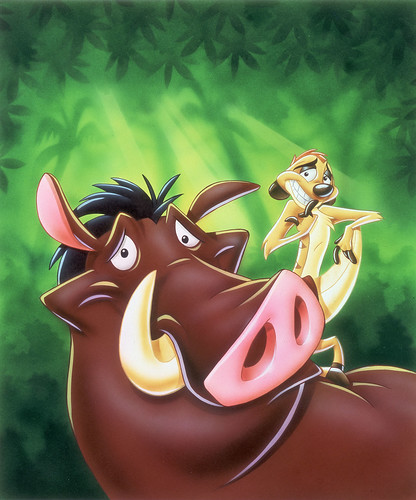 Timon and Pumba(1)