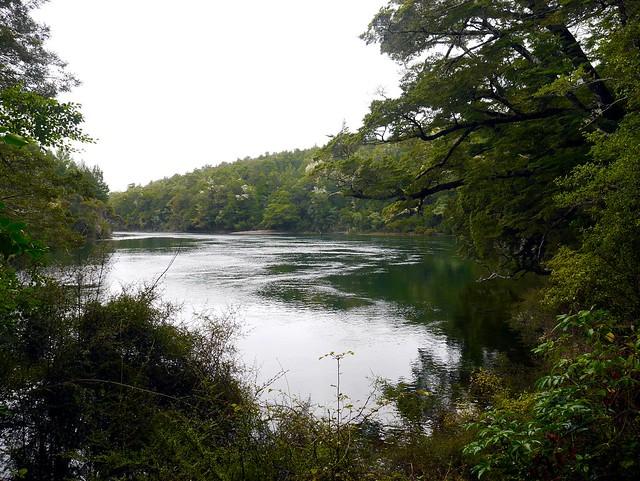 Verdent River