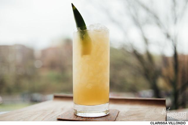 Pineapple Vanilla Soda