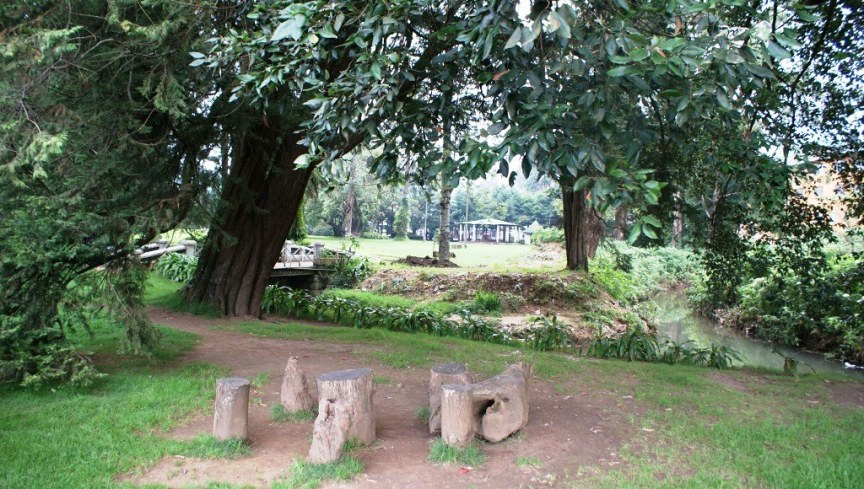 Victoria Park Newara Eliya 44